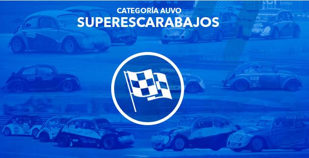 Categoria Superescarabajo